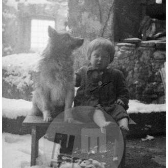 944-6: Malo Marico, ki se je rodila v zloglasnem taborišču na otoku Rabu, je doma na ruševinah njenega doma pričakala zvesta žival. Papeži na Kočevskem, pozimi 1945.
