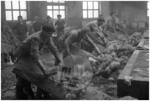 EP138_9: Tovarna usnja, Vrhnika, marec 1951, foto Milan Pogačar.