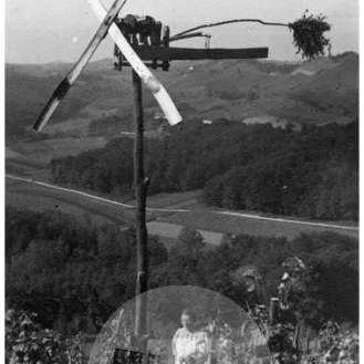 SL2998: Slovenske gorice, ženska v vinogradu in klopotec, fotografski atelje Elza, Ljutomer.