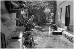 Perice pri delu, okolica Bleda, 12. 9. 1947.
