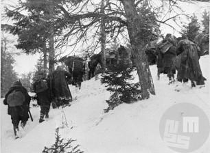 14. divizija na Graški gori 21. februarja 1944. Foto: Jože Petek