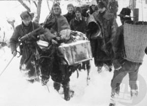 Borci 14. divizije na Graški gori 21. februarja 1944. Foto: Jože Petek