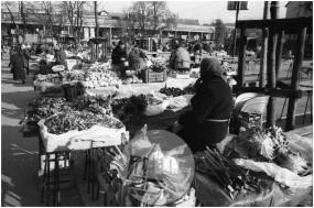 Dob_07, Na ljubljanski tržnici