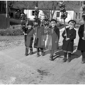 FCn_089: Otroci Franceta Cerarja: sin France, hčere Tončka, Marjanka in Francka ter posvojenka Karmen. Na fotografiji manjkata še hčeri Katarina (Nina) in Darinka. Lukovica, 1939/1940.