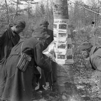 TN904_24: Borci I. bataljona X. brigade si ogledujejo slike potujoče razstave pripete na drevesu. Metlika, 3.3.1945, foto: Milan Štok.
