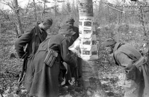 243-904_24: Partizani si ogledujejo fotografije potujoče fotografske razstave, Suha krajina, 25. marec 1945, foto: Milan Štok.