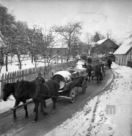 Di154: Prihod kočevskih Nemcev v Krško, prevoz prtljage preseljencev, 15.11.1941, foto: Veit.
