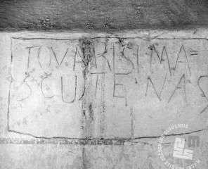 """6253: Zapis na steni celice št. 3 """"Tovariši maščujte nas!"""", foto: neznan, hrani: MNZS."""