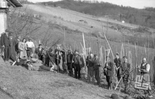Partizani Gubčeve brigade so marca 1944 civilnemu prebivalstvu pomagali pri delu. Foto: Maksimilijan Zupančič - Milijan