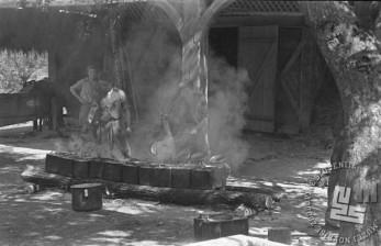 Kuhinja Gubčeve brigade v Paki avgusta 1944. Foto: Alfred Kos