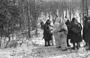 Jurišači Belokranjske brigade na položaju med pripravami za napad na Občine pri Trebnjem od 1. do 7. januarja 1945. Bele maskirne obleke med partizani niso bile prav pogoste. Foto: Milan Štok