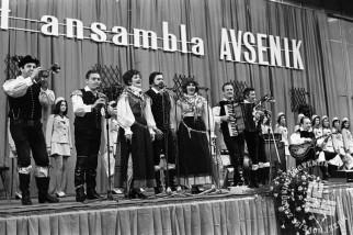 MC7404_16: Praznovanje 20. obletnice obstoja v Hali Tivoli, april 1974, foto: Marjan Ciglič, hrani: MNZS.