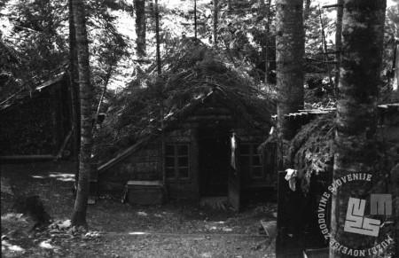 TN1344_21: Bolnica Spodnji Hrastnik. Stara baraka, pomlad 1944. Na fotografiji je vidna s smrekovimi vejami zakrita streha, da se ta nebi videla iz zraka. Foto: dr. Janez Milčinski - Peter.