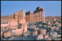 Pogled na Palmiro ob sončnem vzhodu. / A view on Palmyra in the sunrise.
