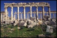 Apamea, rimsko antično mesto v bližini Hame. / Apamea – the Roman antique town near Hama.