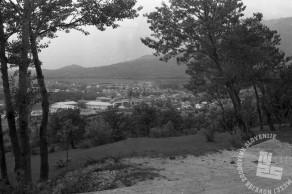 MŠ264_10: Verjetno nekje na Primorskem, foto: Miloš Švabić.