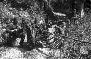 TN789_40: Miting borcev jurišnega bataljona XXX. divizije. Borci ob nemškem protitankovskem topu, Goriška, 4. maj 1945.