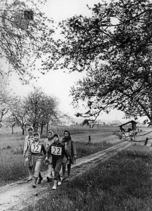 Pohod ob žici, 1950. leta. Foto: neznan