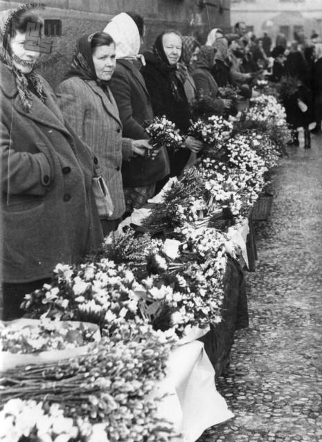 Prodajalke cvetja na ljubljanski tržnici, 1950. leta. Foto: neznan
