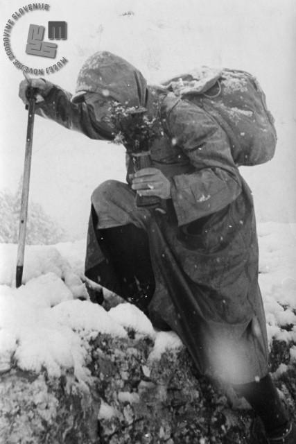 Titova štafeta, 1950. leta. Foto: neznan