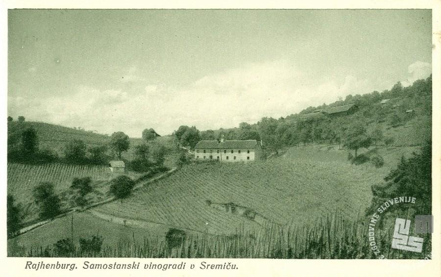 1. Trapistovski vinogradi na Sremiču nad Krškim