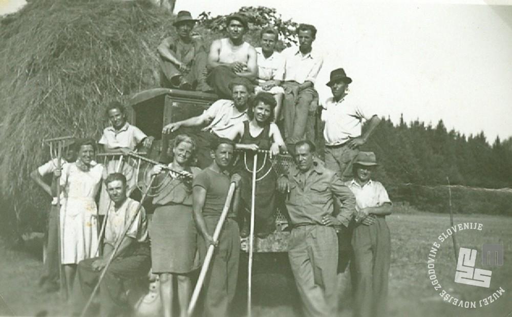 Posestvo Rajhenburg leta 1948, spravilo sena na ribnikih. Med zaposlenimi so bili tudi bivši trapisti. Last Stane Kukovičič