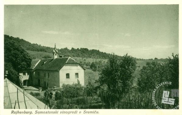 Bivalna stavba z vinskimi kletmi na Sremiču. Foto: neznan, hrani: MNZS.