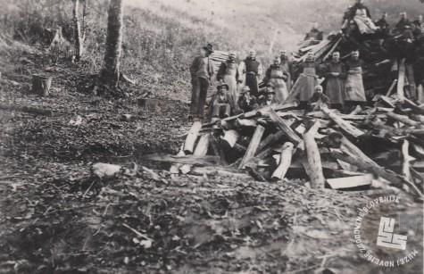 Delo v gozdu in priprava drv za zimo. Foto: neznan, hrani: MNZS.