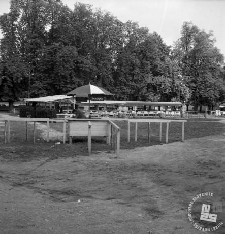 DE2787_8: Ljubljana, julij 1961. Foto: Svetozar Busić, hrani: MNZS.