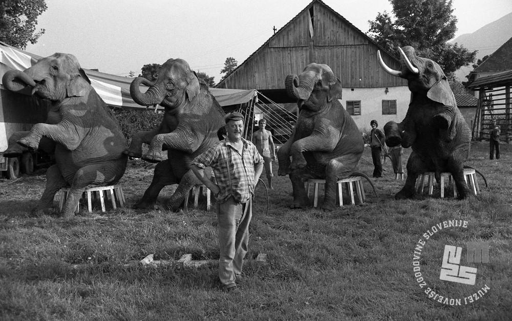 DE7820_8: Barje, avgust 1978. Foto: Miško Kranjec, hrani: MNZS.