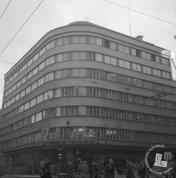 DE804_4: Foto: Edi Šelhaus, hrani: MNZS.
