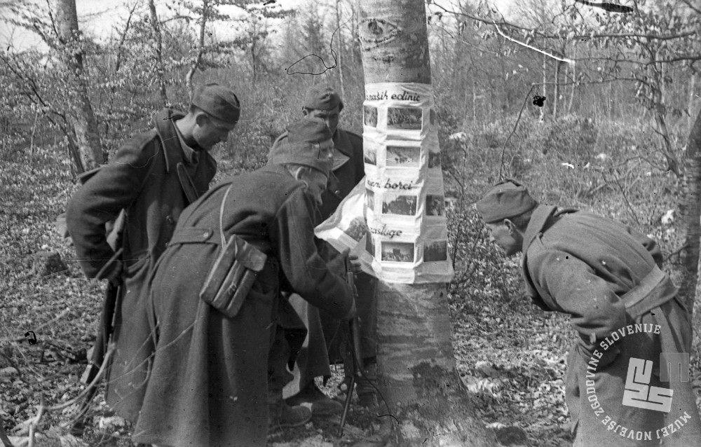 /24: Borci I. bataljona X. brigade si ogledujejo slike potujoče razstave, Suha krajina, 25. 3. 1945. Foto Milan Štok, hrani: MNZS.