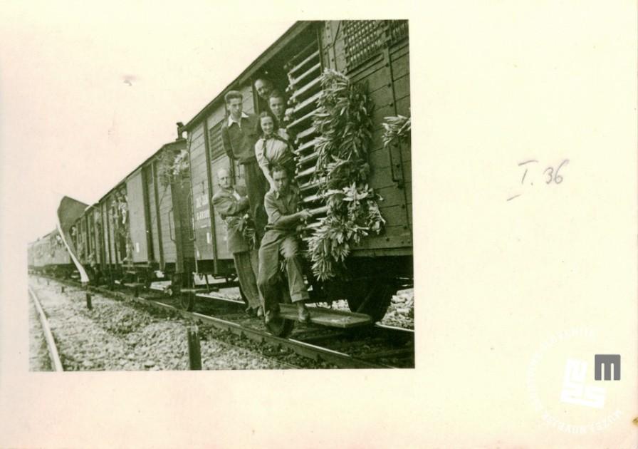 Člani društva Enotnost na poti na zlet v Beograd, ki je bil 22. junija 1947. Foto: neznan, hrani MNZS.