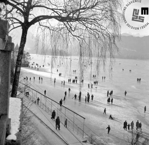 Edi Šelhaus je bil v času, ko je bil zaposlen kot fotoreporter, kar za nekaj svojih fotografij nagrajen. Za posnetek iz leta 1961 z naslovom »Zimska promenada na Blejskem jezeru« je Šelhaus na zagrebški zvezni razstavi »Odmor in rekreacija« decembra 1961 prejel 3. nagrado.